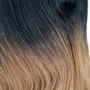 Ombre Chestnut T1B/ 6