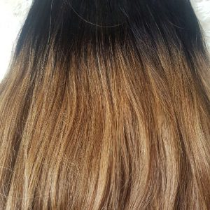 Ombre Chestnut